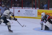 Spits fall to IceDogs
