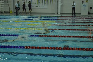 swimming photo3