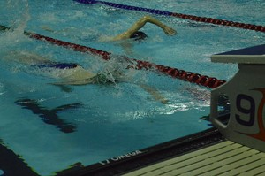 swimming photo4