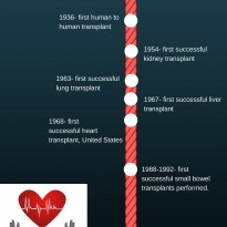 History of the Transplant Process