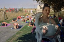No kidding, Goat Yoga has hit Windsor Essex