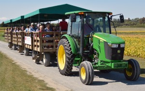 A John Deere tractor pulls three covered wagons on a trail through field plots -- while a research scientist acts as a tour guide -- at the Harrow Research and Development Centre open house on Saturday, Sept. 16 in Harrow, ON. Photo by Ken Pastushyn.