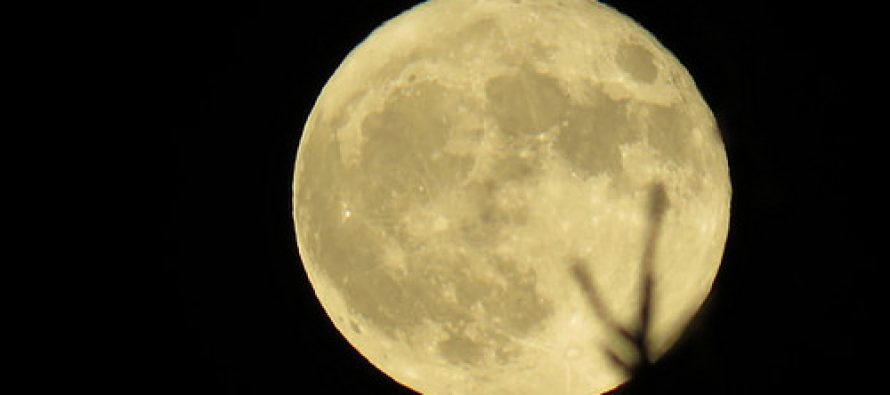 Have you seen the Super Moon this year?