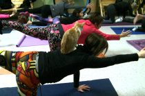 No kitten around: Cat yoga at Moggy's Mission in Tecumseh