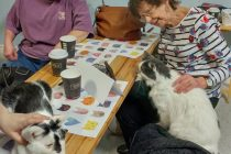 Windsor's first cat cafe a huge success